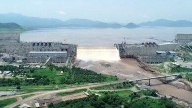 """صورة وزير الري """": إثيوبيا تحصل على أكثر من 1000مليار متر مكعب من مياه الامطار والنهار سنويا"""