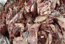 """صورة """"الزراعة"""": ضبط 105 طن لحوم ودواجن واسماك فاسدة"""
