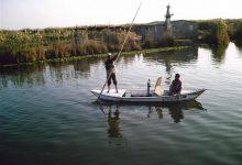 """صورة """"الزراعة """": ضم الصيادين غير القادري تحت مظلة برنامح تكافل وكرامة"""