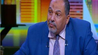 صورة د علي اسماعيل يكتب : نظرة تفائل الي الزراعة المصرية