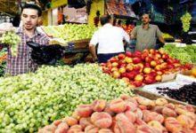 صورة كيف حققت مصر الاكتفاء الذاتي من 82 سعة زراعية؟
