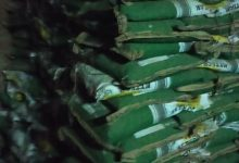 صورة الزراعة : ضبط 11 طن تقاوى مغشوشة في محطة الغربلة