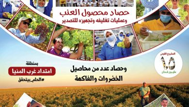 صورة الريف المصري الجديد : غرب المنيا تستعد لان تكون عاصمة مصر الزراعية