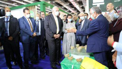"""صورة وزير الزراعة يفتتح المعرض الزراعي الدولي """"صحاري"""" بمشاركة 250"""